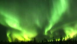 The Northern Lights from an exhibit at the Museum of the North, University of Alaska, Fairbanks.